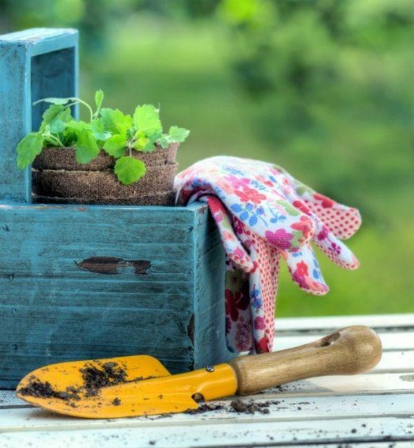 100 gartengestaltungsideen und gartentipps für anfänger - http, Garten ideen