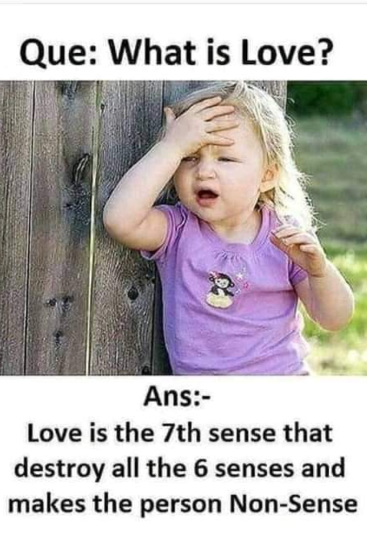 What Is Love Love Quotes Funny Cute Funny Quotes Friendship Quotes Funny