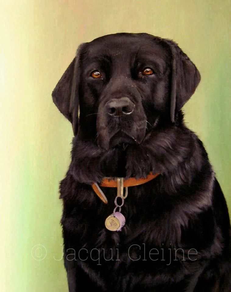 Polly Pet Portrait by Jacqui Cleijne Private Commission