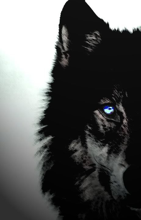 More Dreams About Wolves Explanation Of The White Wolf Totem The