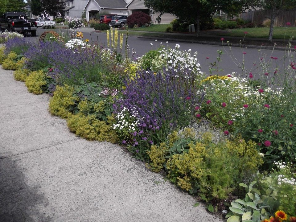 image result for landscaping ideas for long narrow beds beside driveway