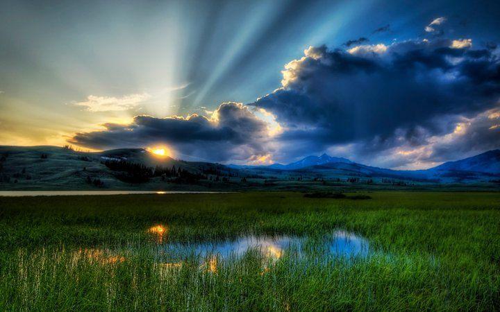 Gorgeous photo!
