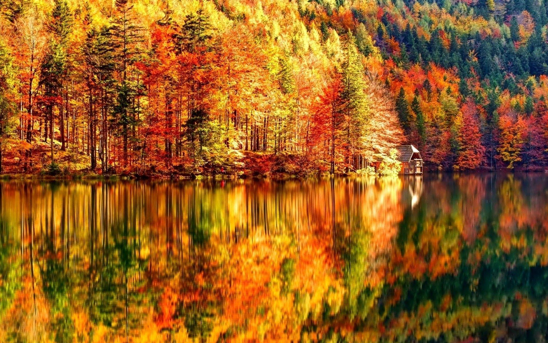 Quelques Superbes Paysages D Automne Autumn Landscape Desktop Wallpaper Fall Landscape Wallpaper