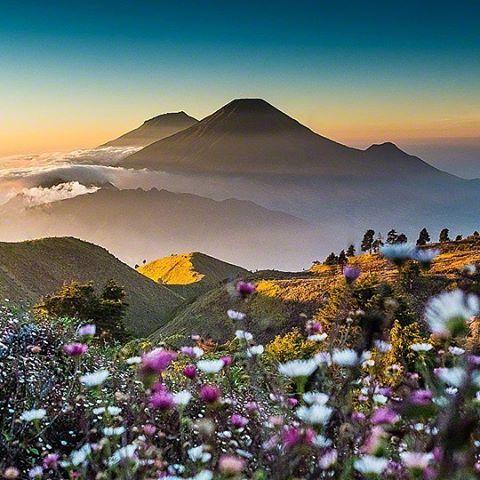 Gunung Prau Dieng Plateau Wonosobo Pemandangan Fotografi Alam Instagram