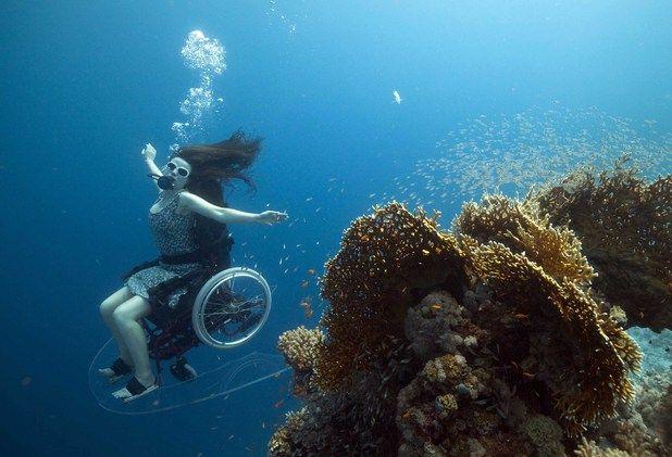 Sue Austin In Her Underwater Wheel Chair Underwater World Underwater Diving