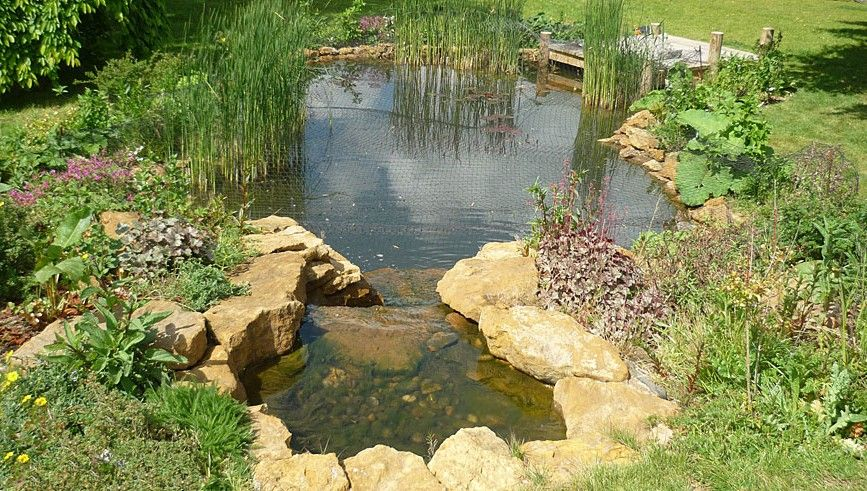 Garden pond design and marginal planting 5 senses garden for How to design a pond