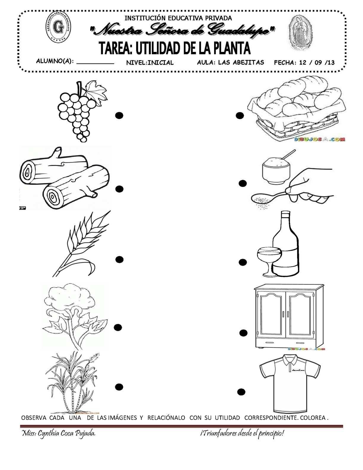 Page 6 Ciencia Preescolar Tecnologia Para Niños Y
