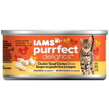 Pets Canned Cat Food Dry Cat Food Cat Food