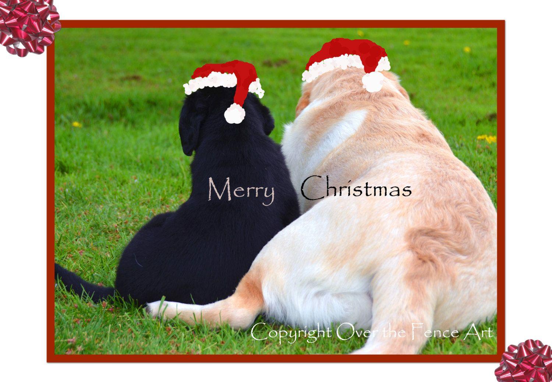 Labrador Christmas Card Dog Best Friends Photo Greeting Card Dog