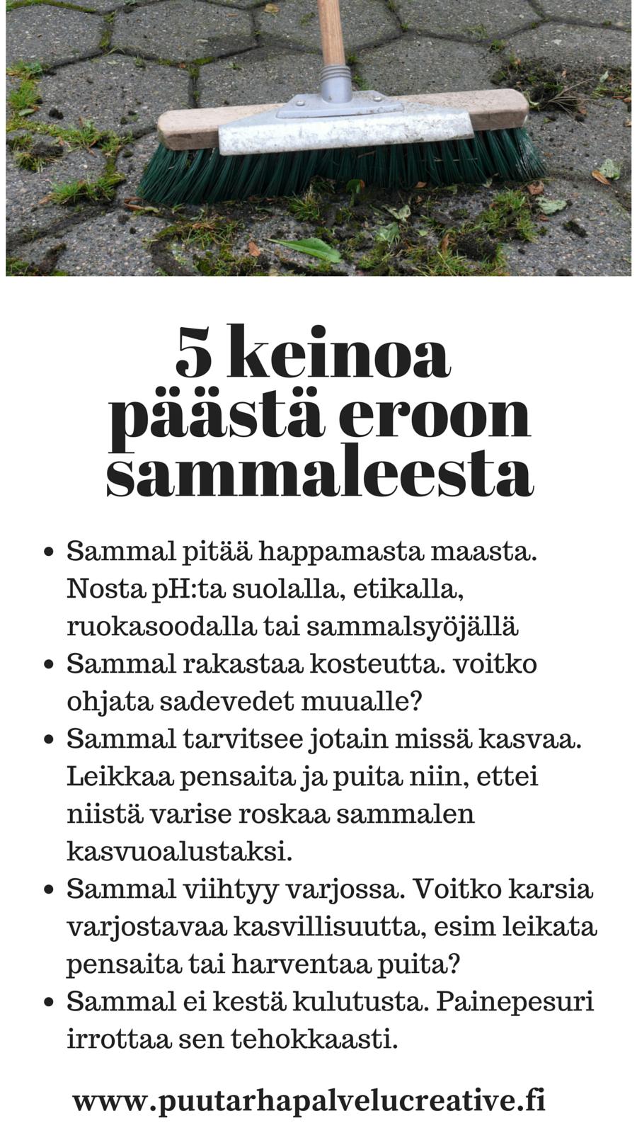 Sammaloitunut kiveys tekee pihan ikävän hoitamattoman näköiseksi. Tässä takuuvarmat keinot vähentää sammaloitumista. www.puutarhapalvelucreative.fi