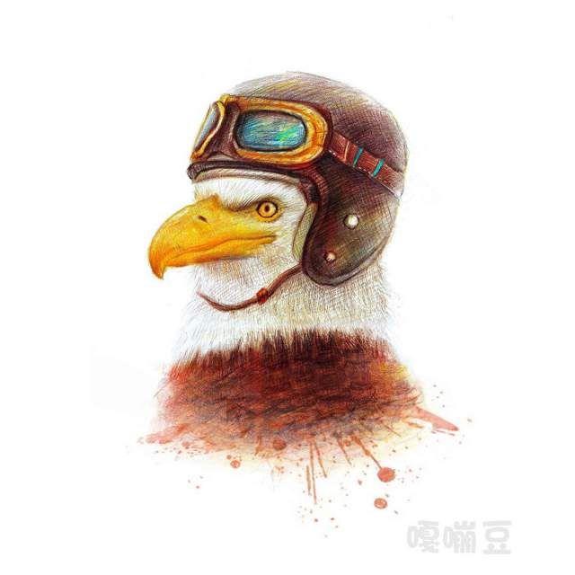 Gambar Hewan Lucu Dan Imut Karya Oliudio Burung Elang Pakai Helm