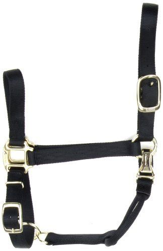 Accent 1-Inch wide Deluxe Halter for Average Horses, 900 to 1300-Pound, Black by Accent. $27.03. Heat sealed no tear holes. Made with high quality, non-fade nylon with triple-ply cheek and chin straps. Diamond stitching for strength and extra durability. The ultimate in luxury, comfort and convenience. Accent deluxe halter features non-fade nylon with triple ply cheek straps, heat sealed no-tear holes, diamond stitching for extra strength, superior quality hardware, a c...