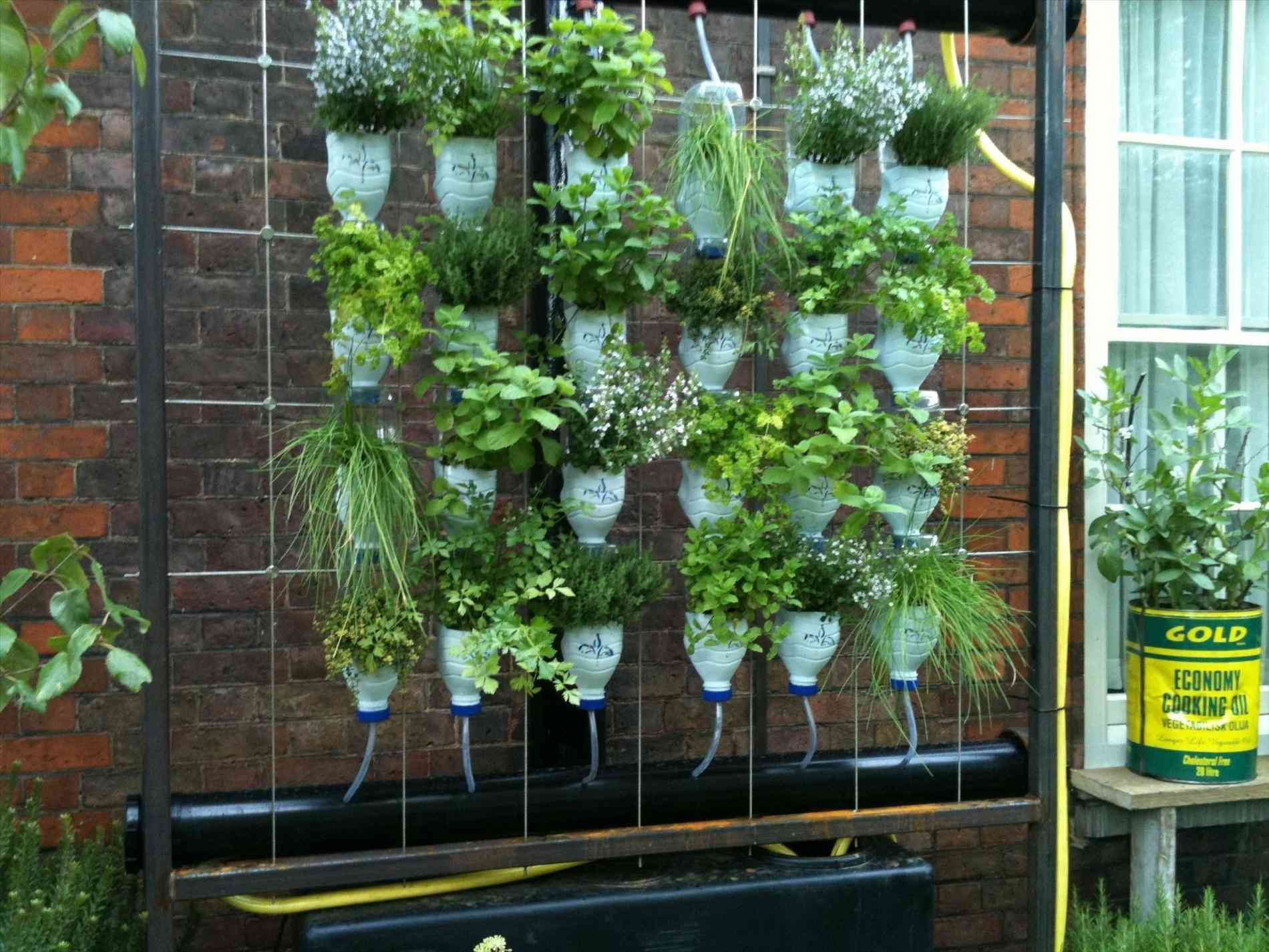 Roof Gardening Ideas With Images Small Backyard Gardens Roof