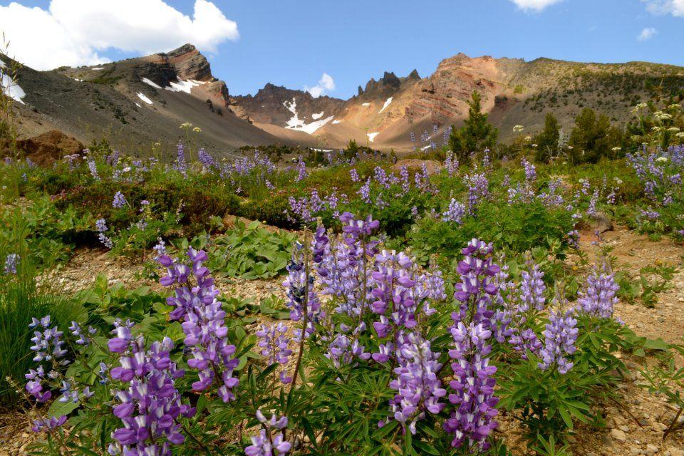 Broken Top Mountain, Central Oregon