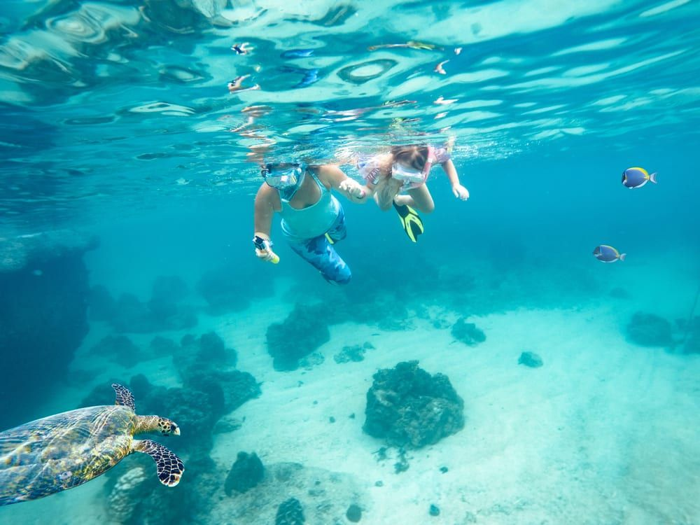 3 Snorkeling Spots You Ll Want To Check