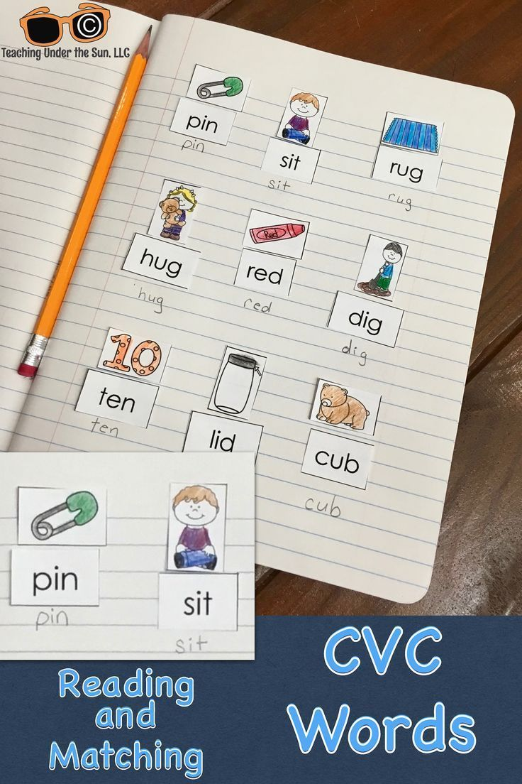 Short Vowel Sort Center CVC Words Phonics Word Work Cvc