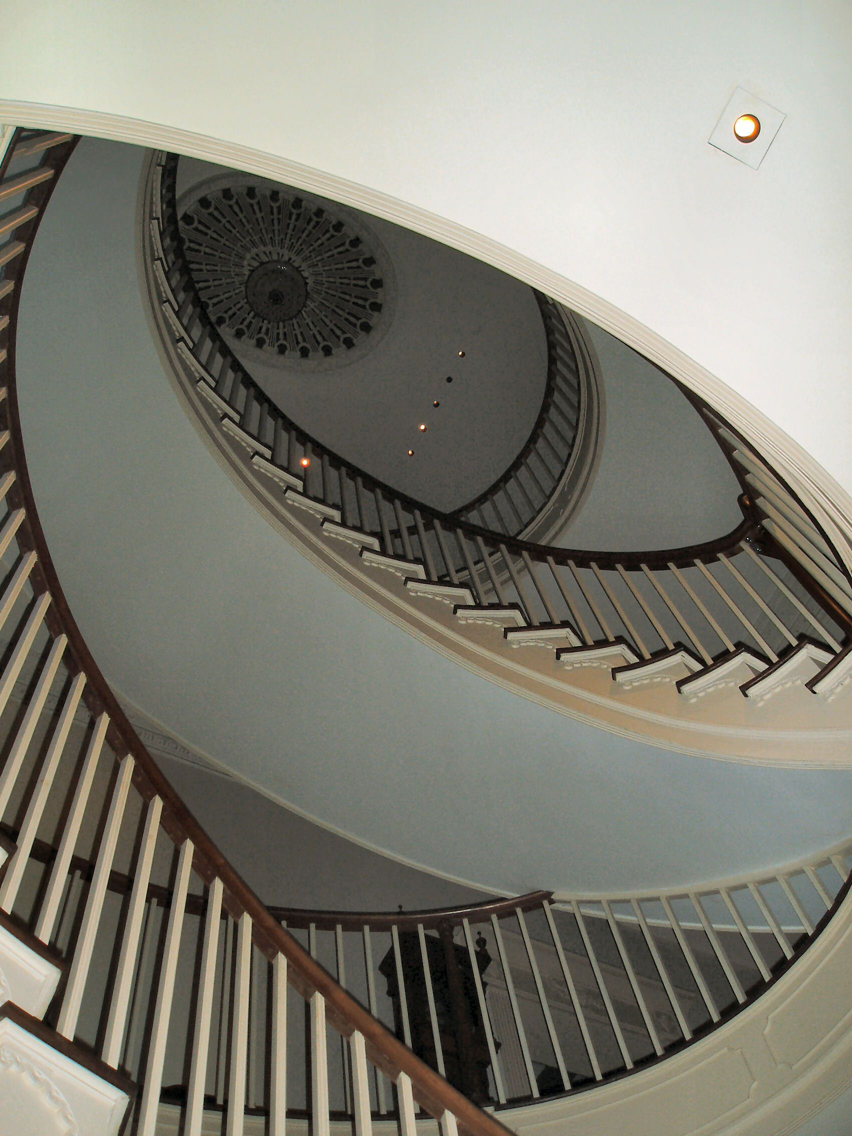 The Montmorenci Staircase, Winterthur Museum, The Largest Free Standing  Spiral Staircase. Installed By HF DuPont While His Family Was Away As A  Surprise.