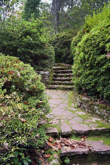Pin By K B On Inspiration Garden Paths Vegetable Garden Design Garden Layout