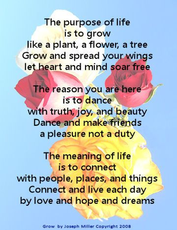 The Meaning Of Life Poem Fromsearchlighton Com Life Poem Inspirational Qutoes Empowerment Inspiration