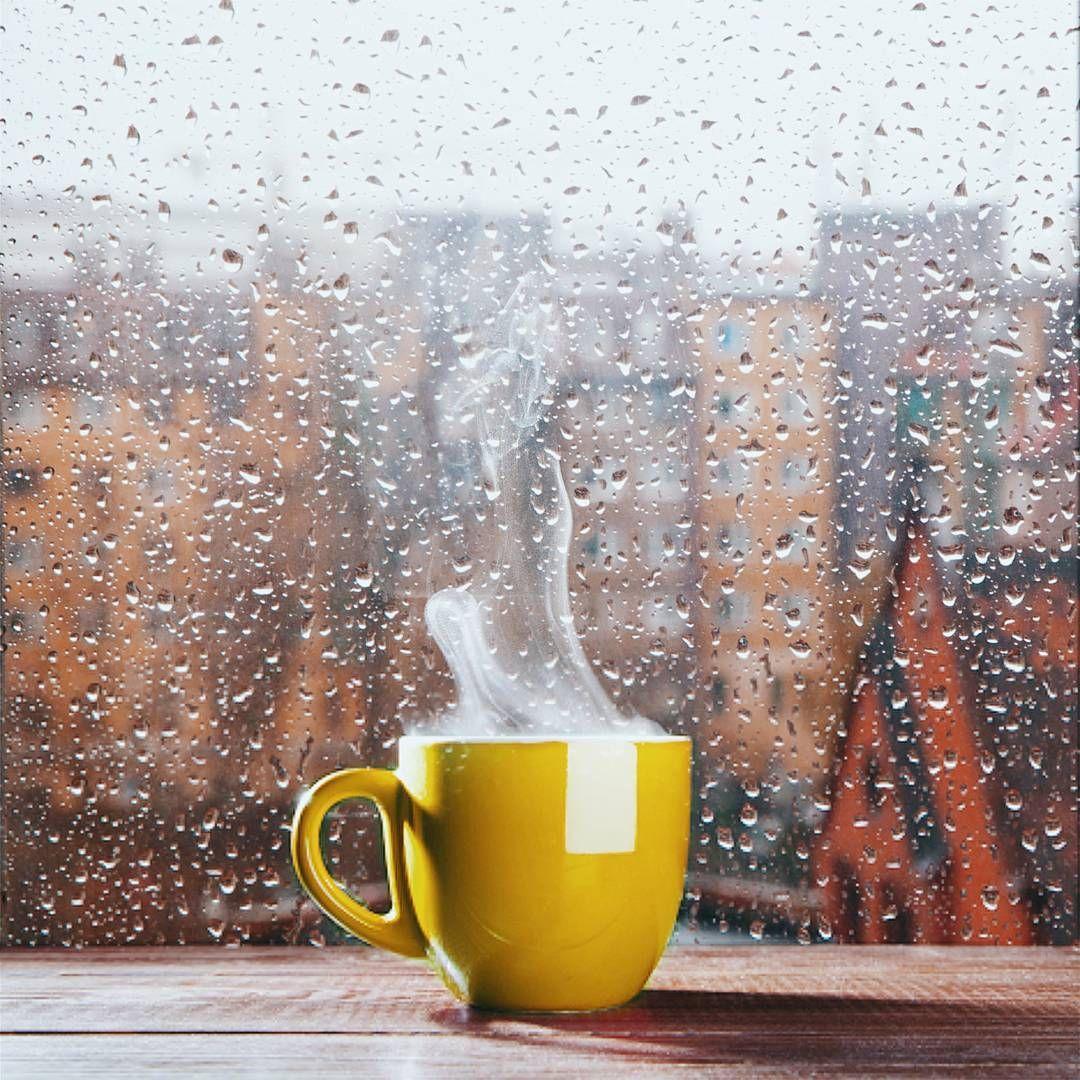 кондитеры картинки фото с добрым утром с дождливая осень модели оверлоков более