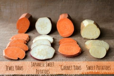 Yams And Sweet Potatoes Is There A Difference Sweet Potato Nutrition Yam Or Sweet Potato Japanese Sweet Potato