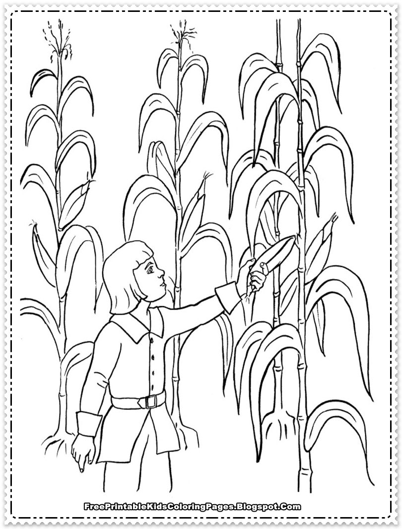 harvesting the corn field printable kids coloring sheet