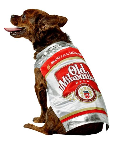 Old Milwaukee Beer Can Dog Costume Best Dog Halloween Costumes