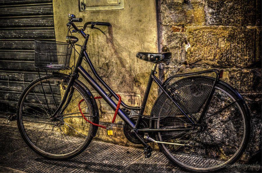 Bike in florence bike bicycle florence