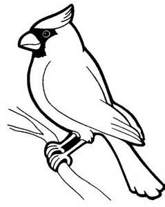 Image Result For Cardinal Bird Template Printable Bird Outline Bird Coloring Pages Black And White Birds