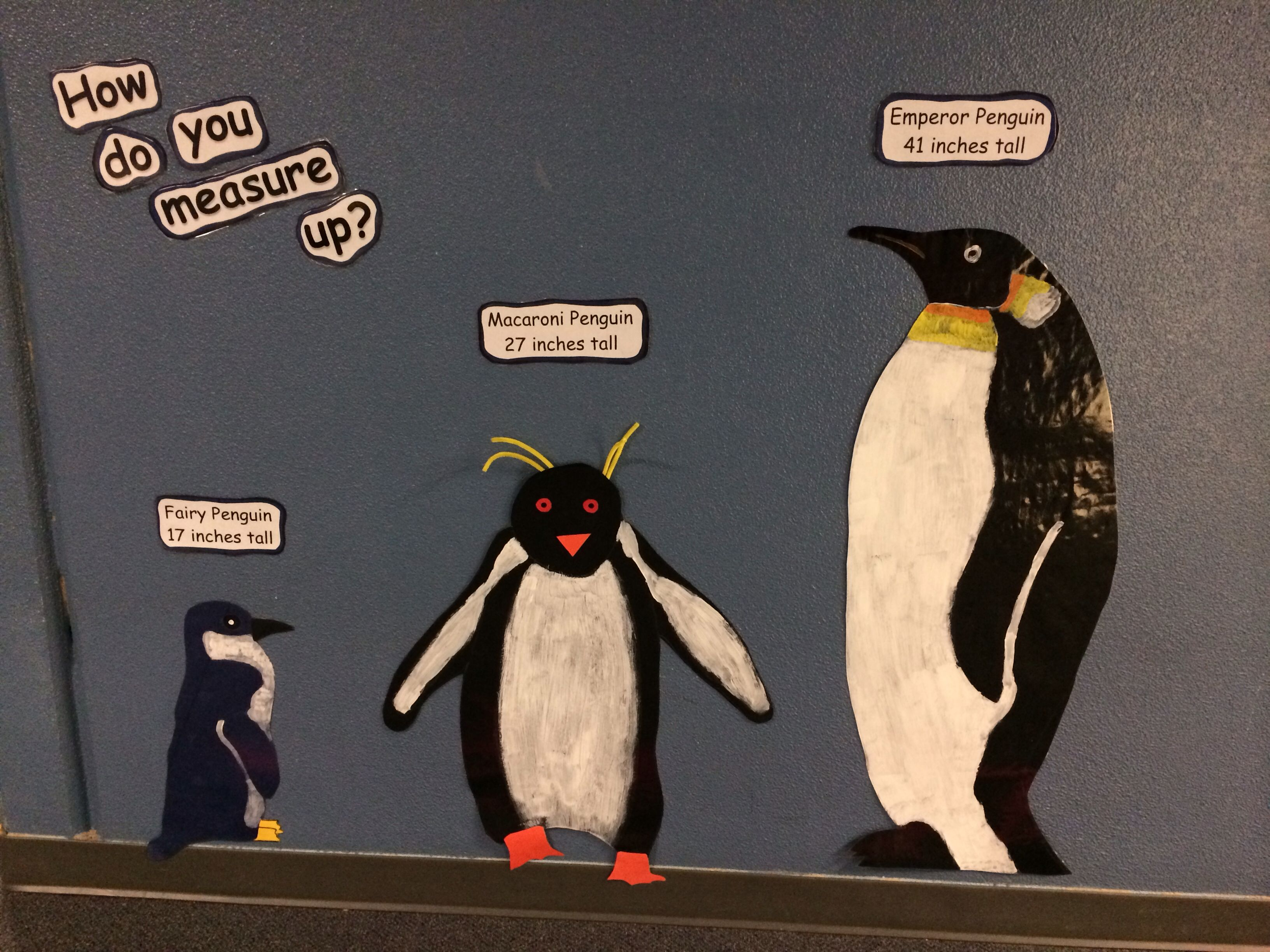Made These Life Size Penguins For My 1st Graders They
