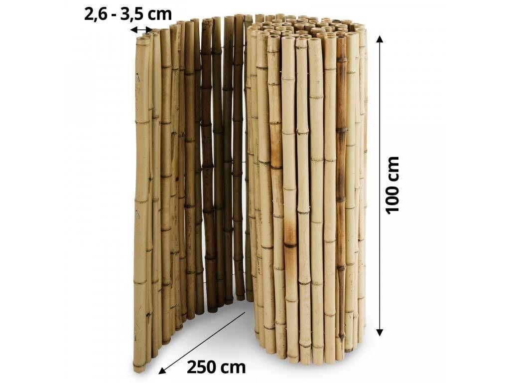 Bambus Sichtschutz Phyllostachys Wood Furniture