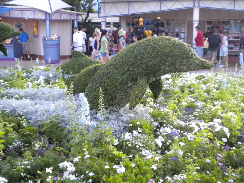 I Would Love To Have A Dolphin Shaped Bush At My House