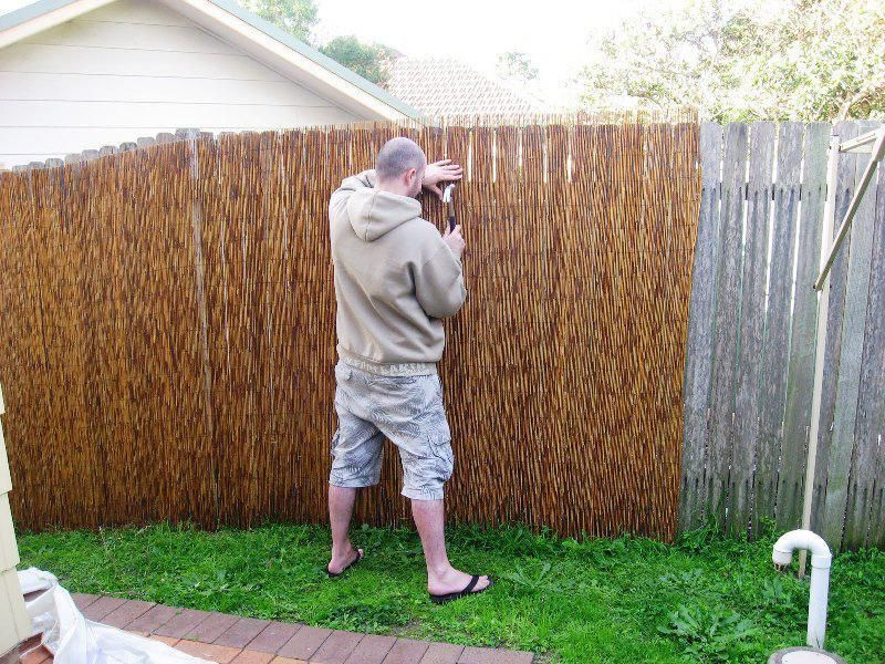 Bamboo Fence Roll 8 Ft High Umpquavalleyquilters Com Why Choose A Bamboo Fencing Roll Bamboo Privacy Fence Bamboo Fence Backyard Fences