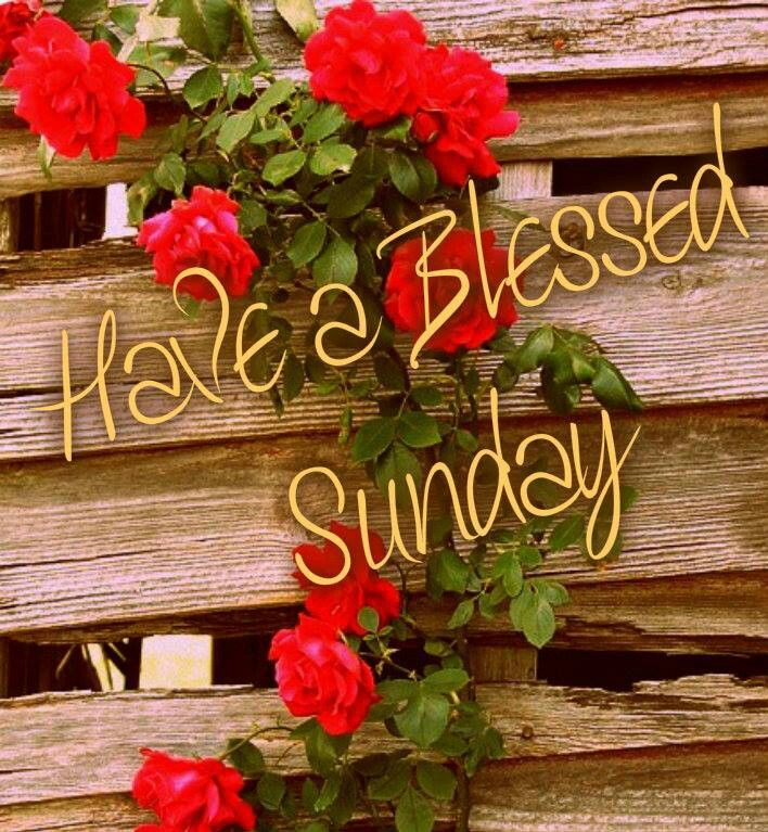 Blessed Sunday Happy sunday images, Have a blessed