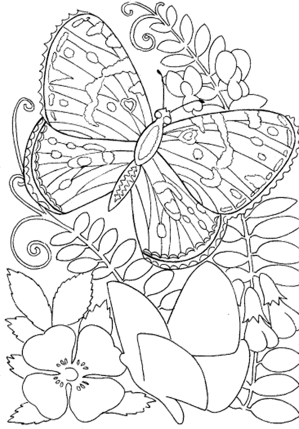 coloring pages for adults free printable - Detailed Coloring Pages For Kids