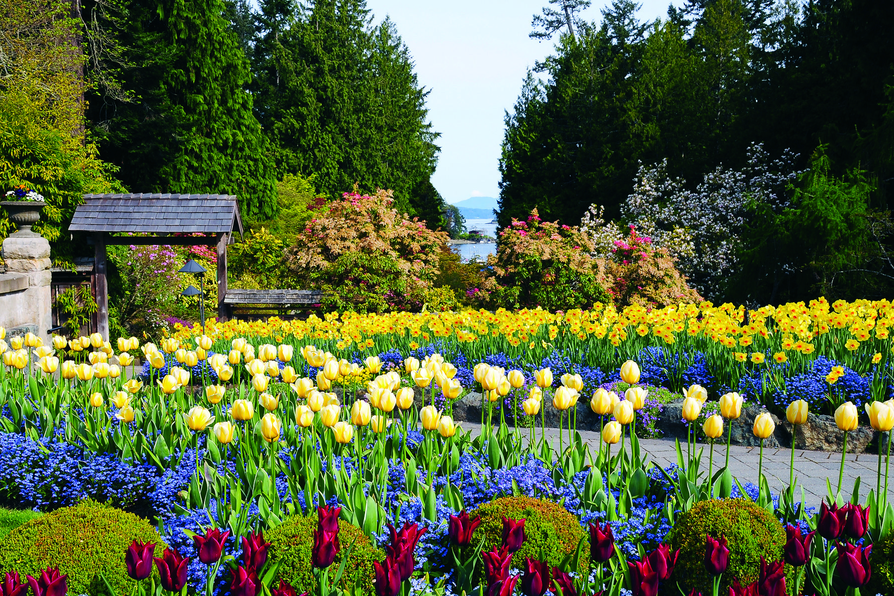 Butchart gardens victoria bc canada google image result for Jardines butchart
