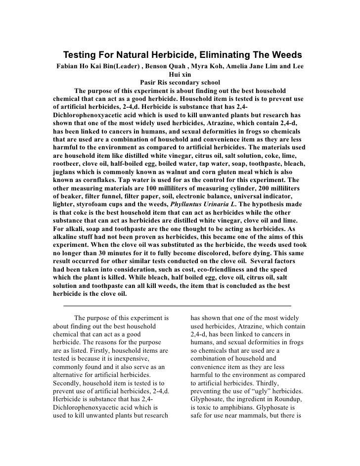 2000 words essay
