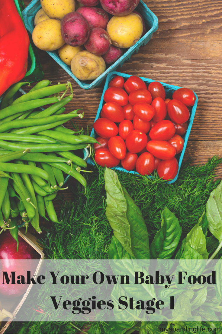 Make Your Own Baby Food - Veggies Stage 1   Baby food ...
