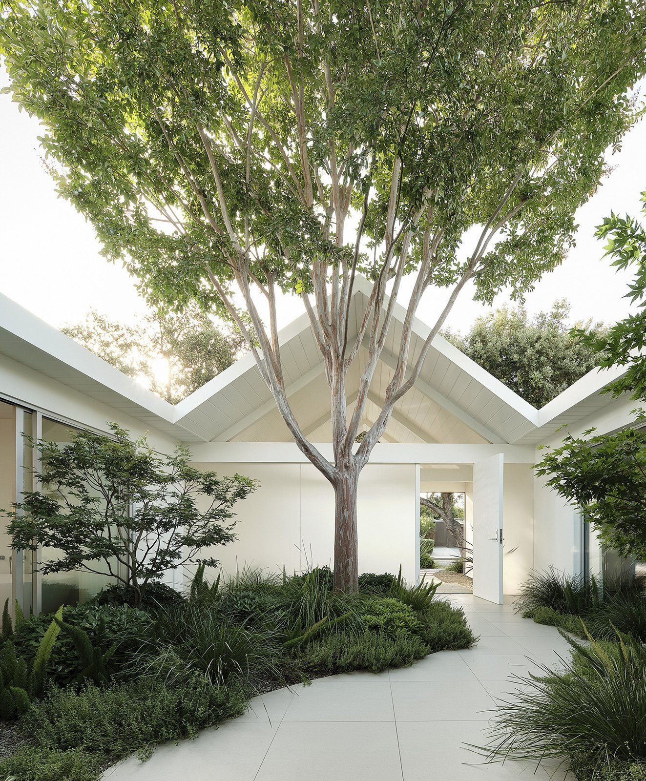 Photo 2 Of 16 In A Tree Grows Right Through The Roof Of This In 2020 Gable House Backyard Trees Eichler Homes