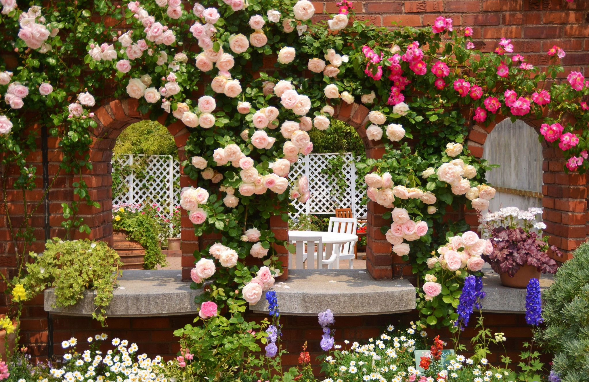 Pink Rose Garden Wallpaper rose garden desktop background | 1750 | hostelgarden | 10