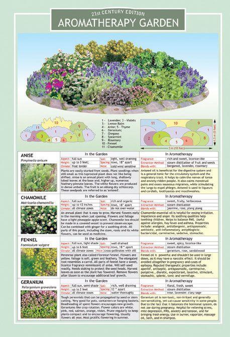 Milk And Honey Inc Aromatherapy Garden Chart Country Garden