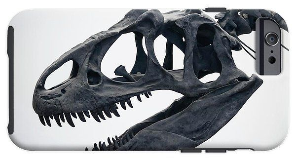 A Portrait Of An Allosaurus Skull IPhone Case for Sale by ...