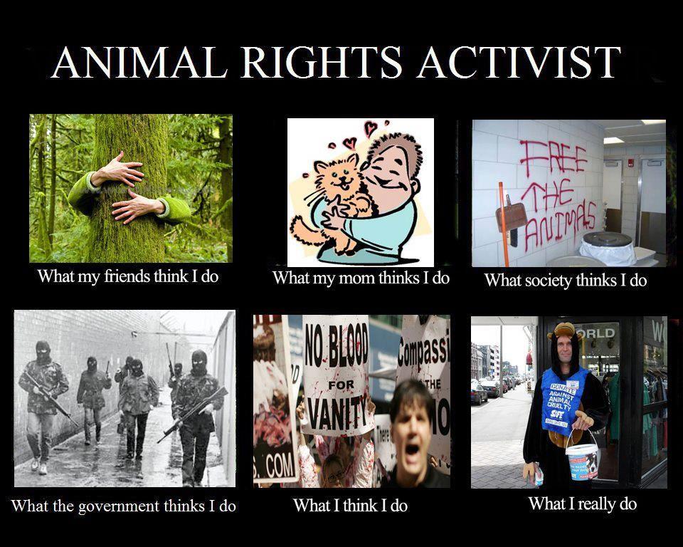 Animal rights activist dating