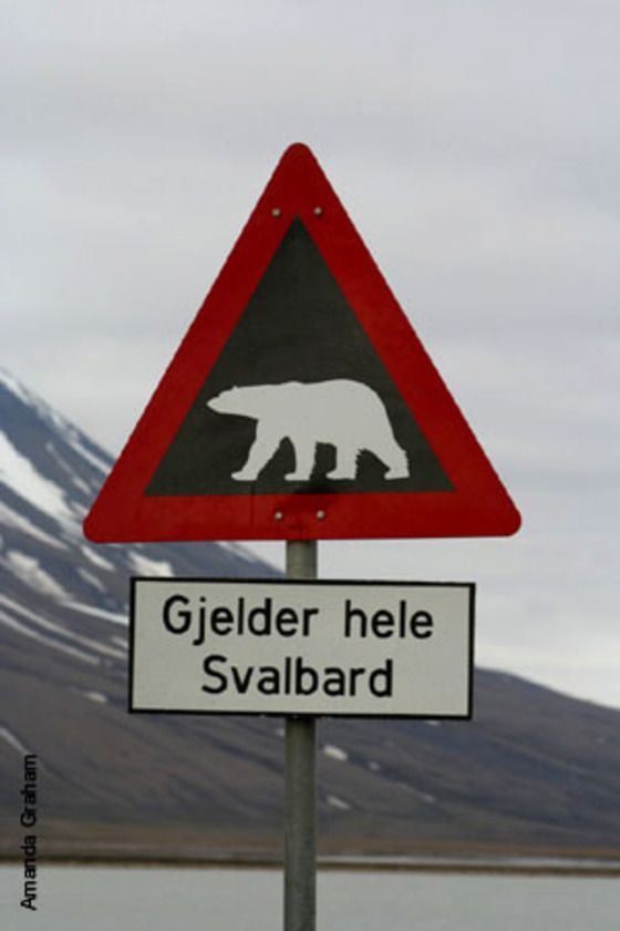 Gjelder hele Svalbard - I guess this means polar bear crossing...