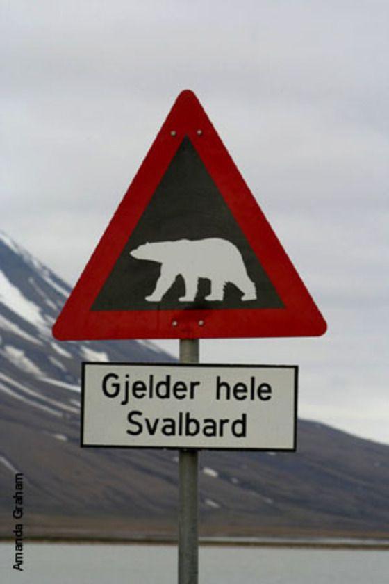 Gjelder hele Svalbard - I guess this means polar bear crossing...