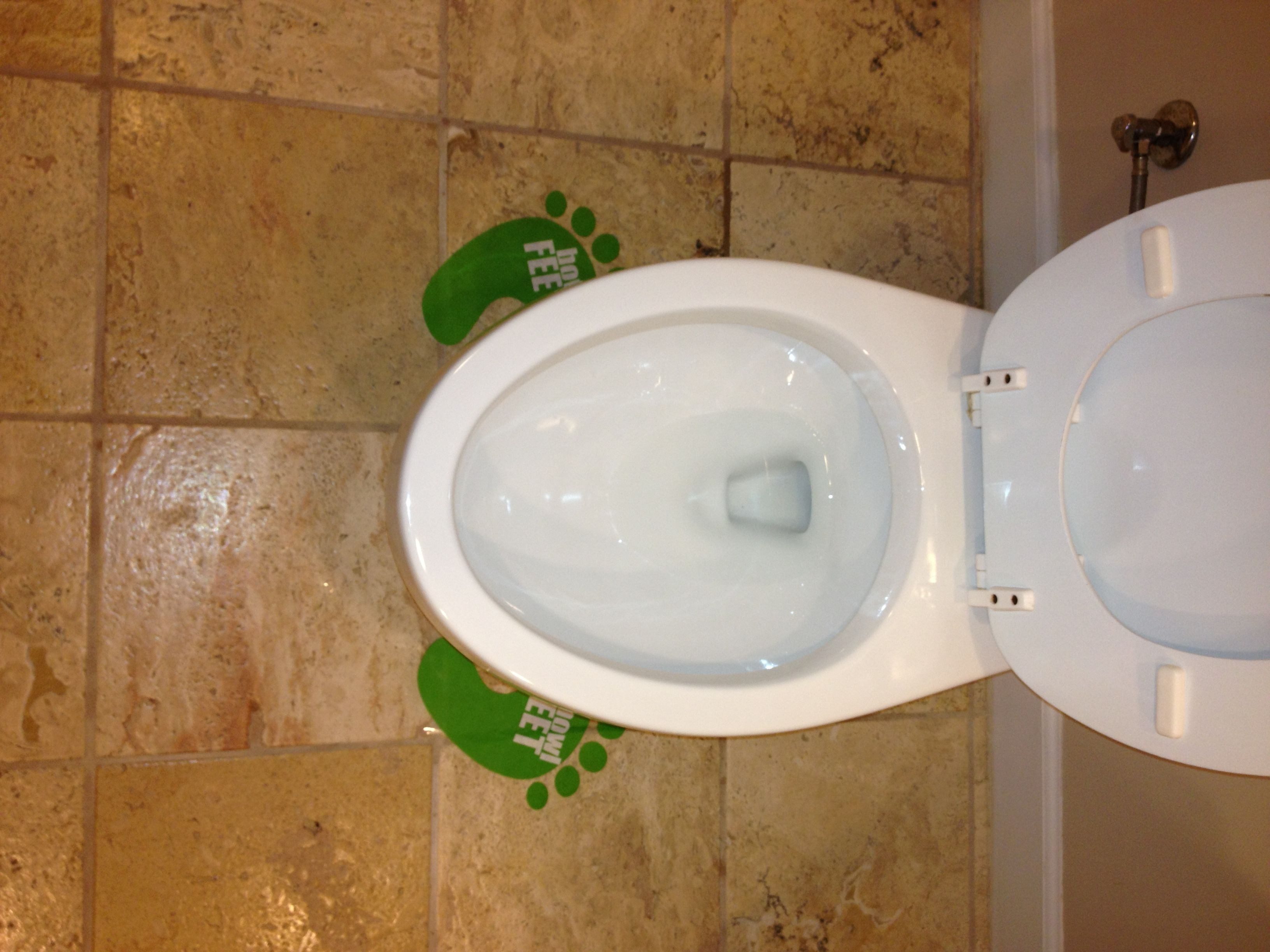 No more pee on the seat or floors. Serious.
