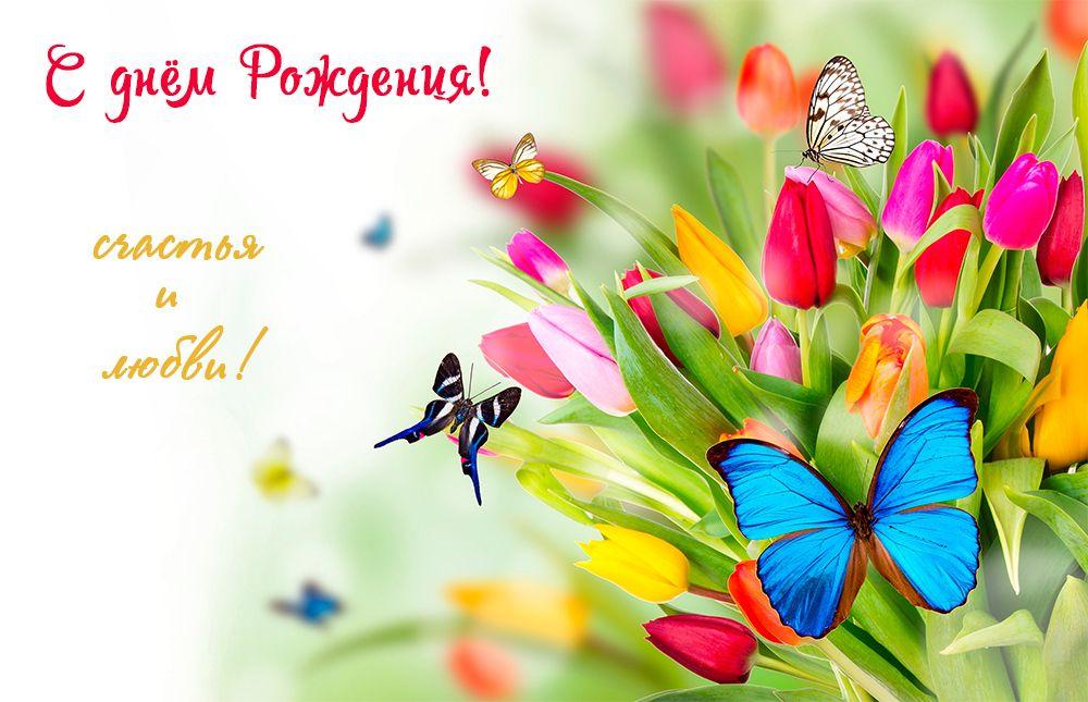 Картинки с бабочками поздравление с днем рождения