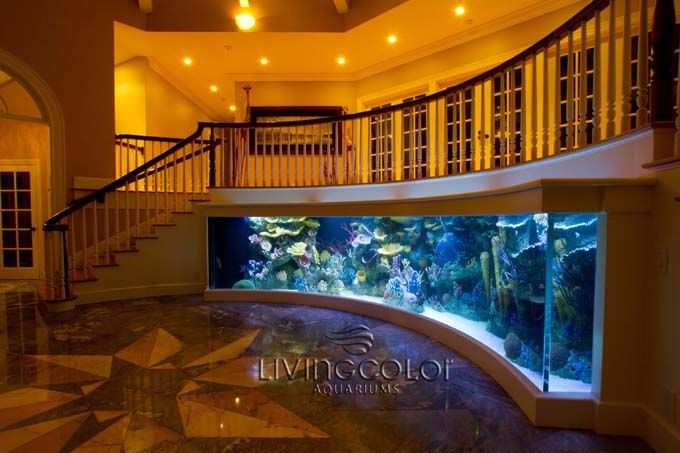 Awesome aquarium maybe for the chief commander 39 s for Inverted fish tank
