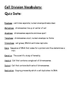 Cell Division Vocabulary and Quiz | Division
