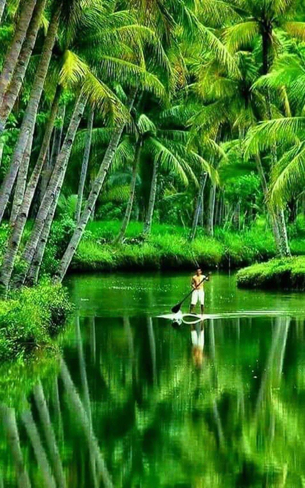 Sign In Kerala Travel Nature Pacitan